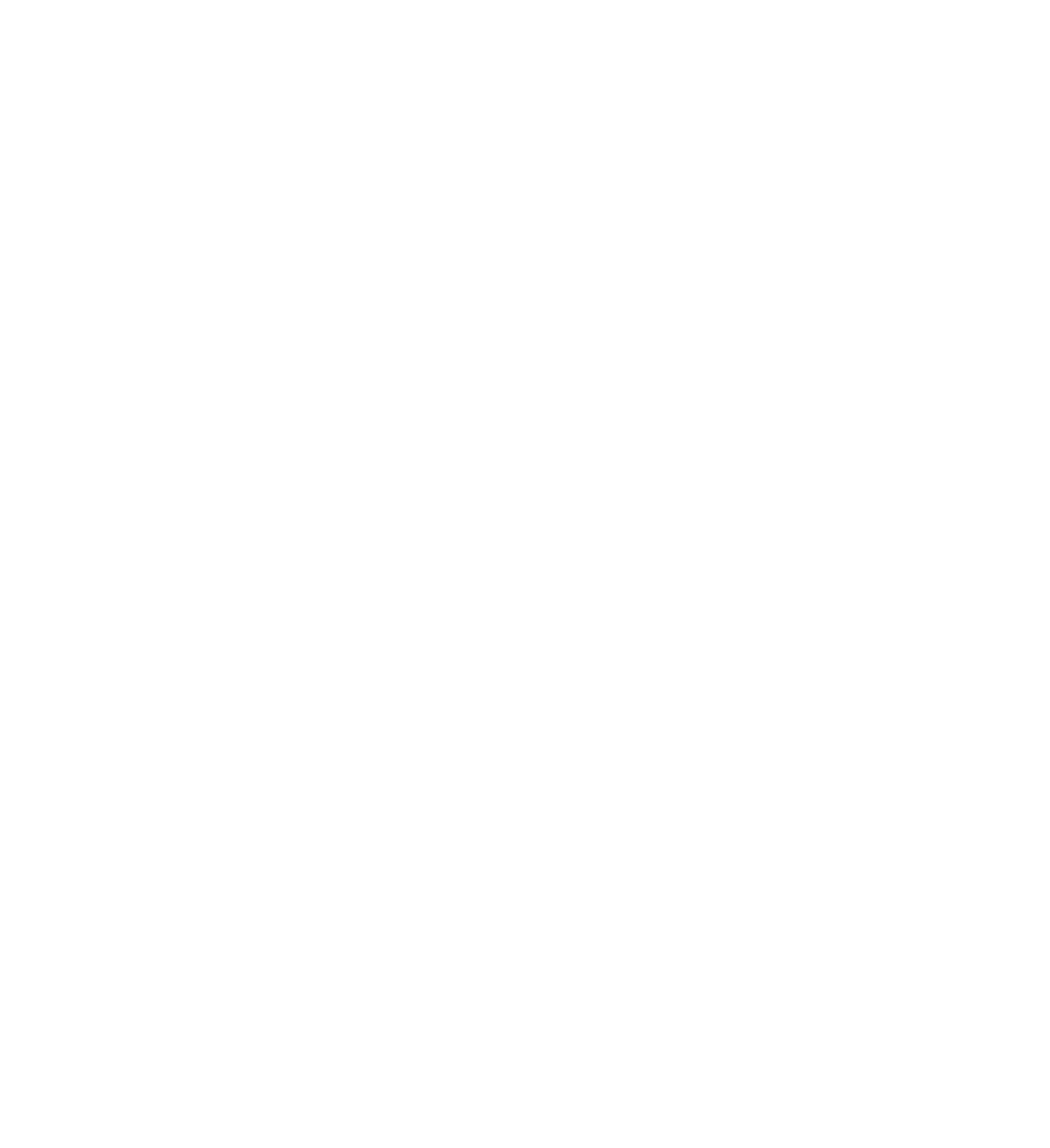 REUNION GRAFFITI